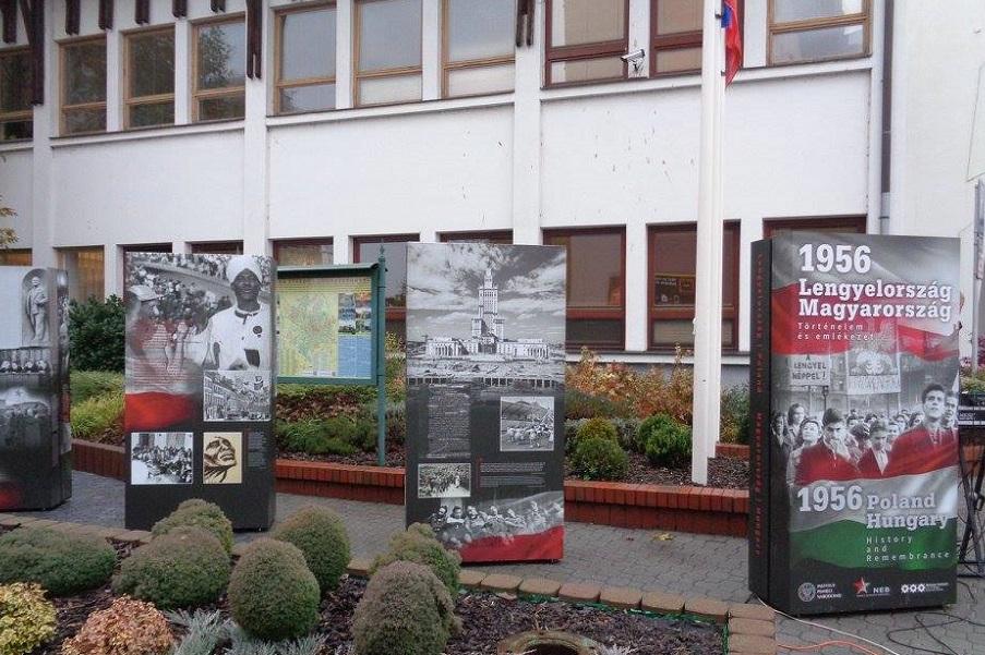 Instytuty Polskie nie tylko dla Polonii