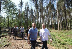 PO chce komisji śledczej w sprawie Puszczy Białowieskiej