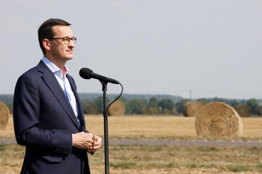 """Największa susza od20 lat. """"Rząd udaje, żepomaga rolnikom"""""""
